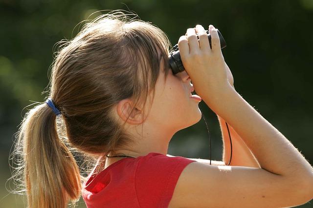 profil d'apprentissage visuel