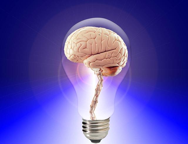 cerveau à l'école : à quoi ça sert ?
