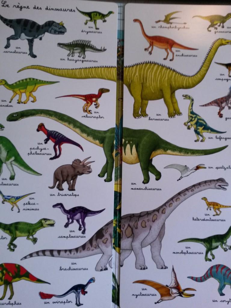 Cherche et trouve au temps des dinosauress