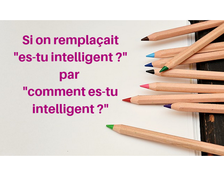 Une d finition de l 39 intelligence for Definition de l