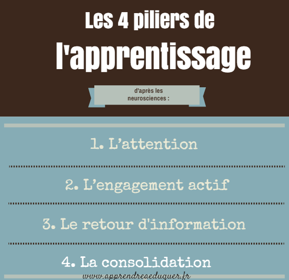 de l adulte Psychologie apprenant