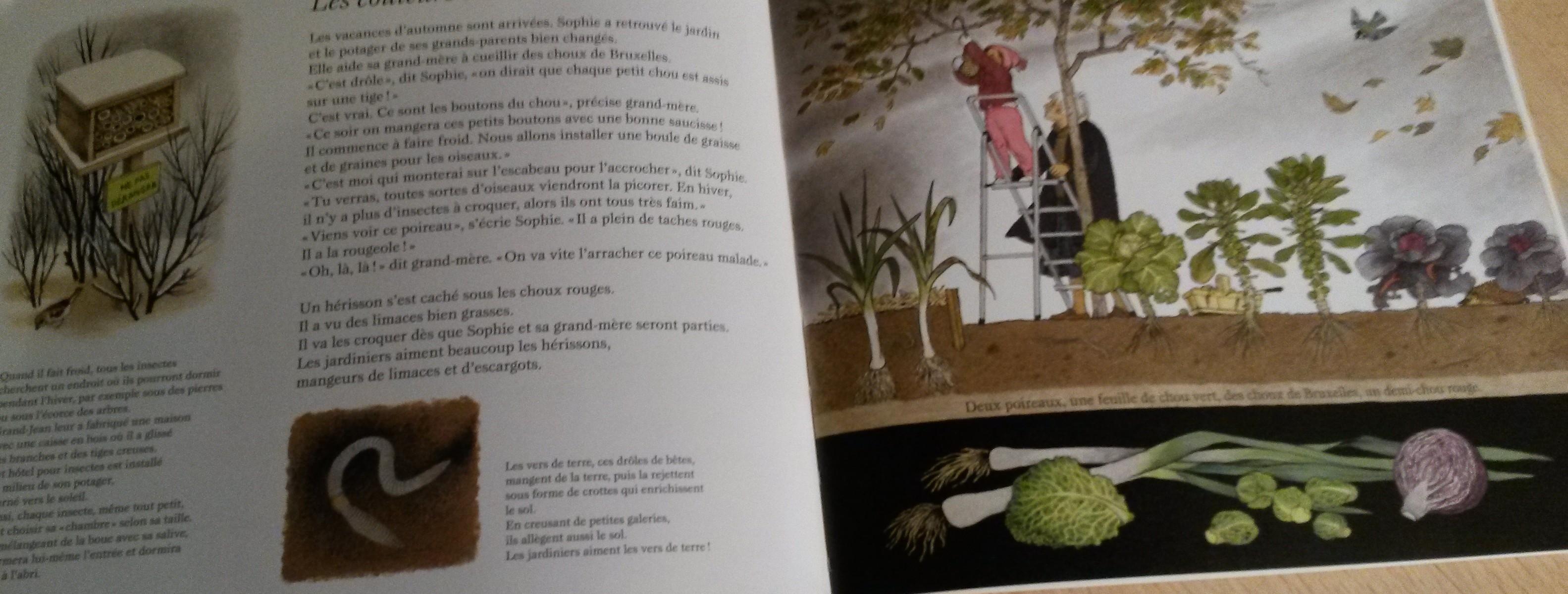 A pousse comment la d couverte des travaux jardiniers - Comment pousse les kiwi ...