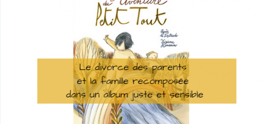 la grande aventure du petit tout divorce parents