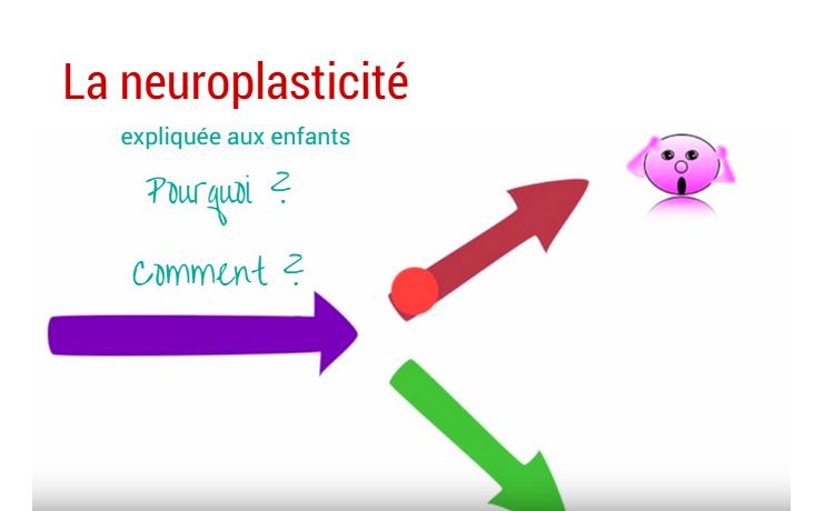 neuroplasticité expliquée aux enfants