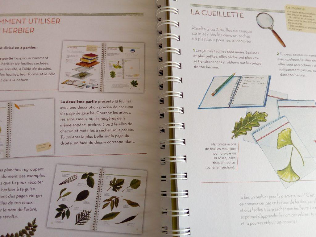 l'herbier des feuilles : un herbier documenté et maniable