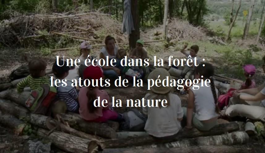 école dans la forêt