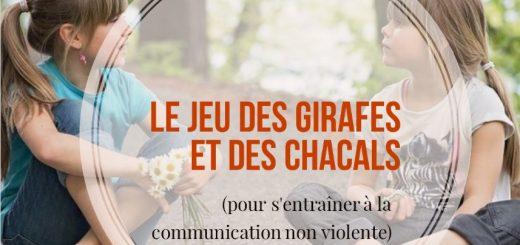 jeu communication non violente