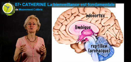 la-bienveillance-educative-catherine-gueguen
