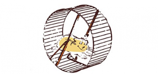 stress pensouillard le hamster