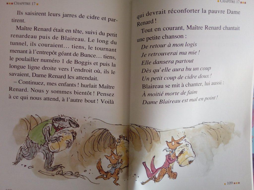 livre fantastique maitre renard enfants
