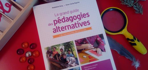 avis grand guide des pédagogies alternatives