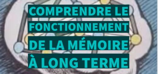fonctionnement mémoire long terme