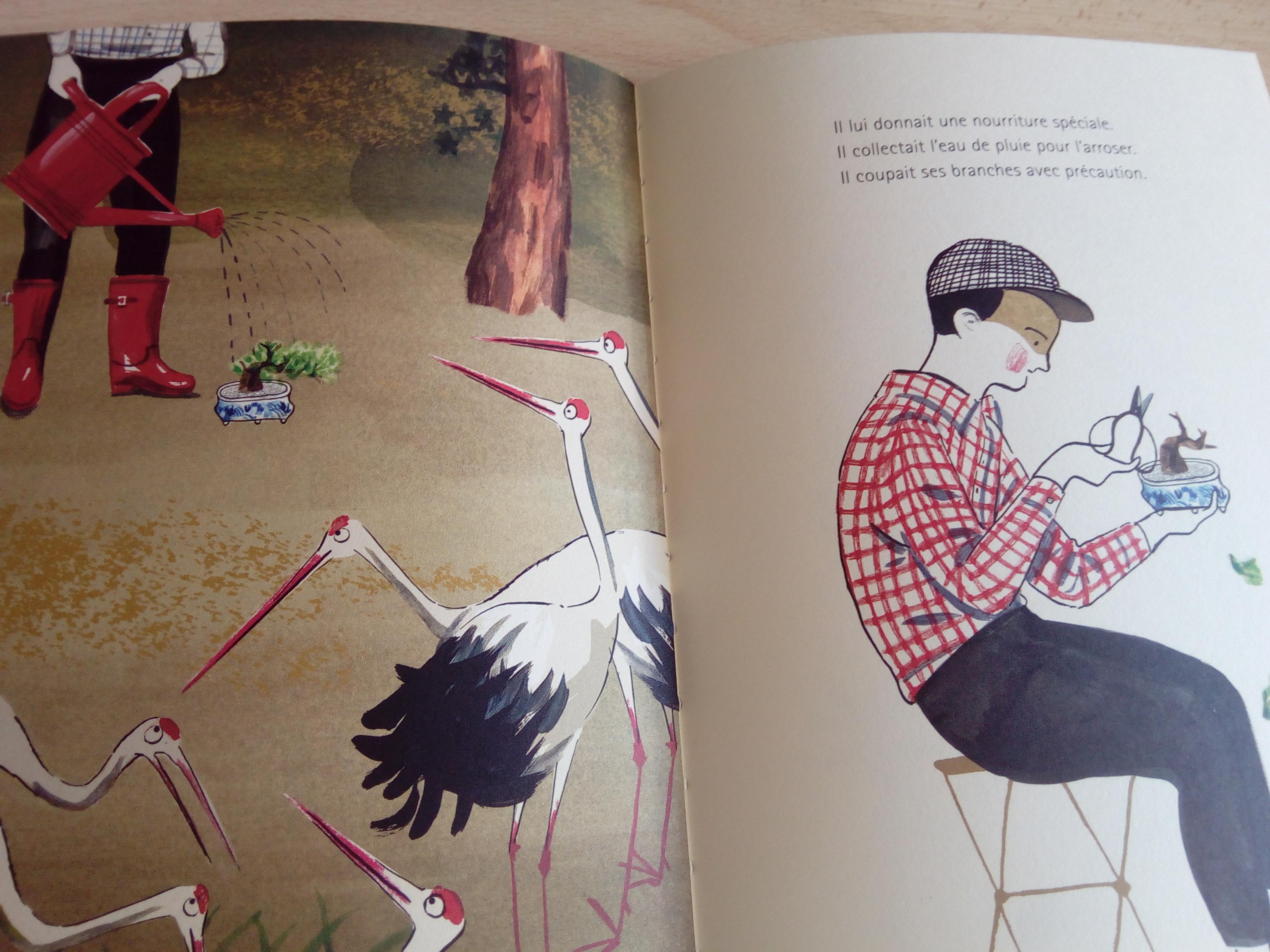 l'enfant et le bonsaï : un sublime livre pour les enfants qui ont