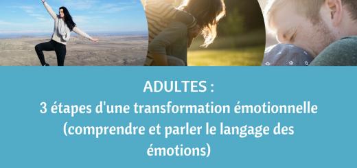 alphabétisation émotionnelle (comprendre et parler le langage des émotions)