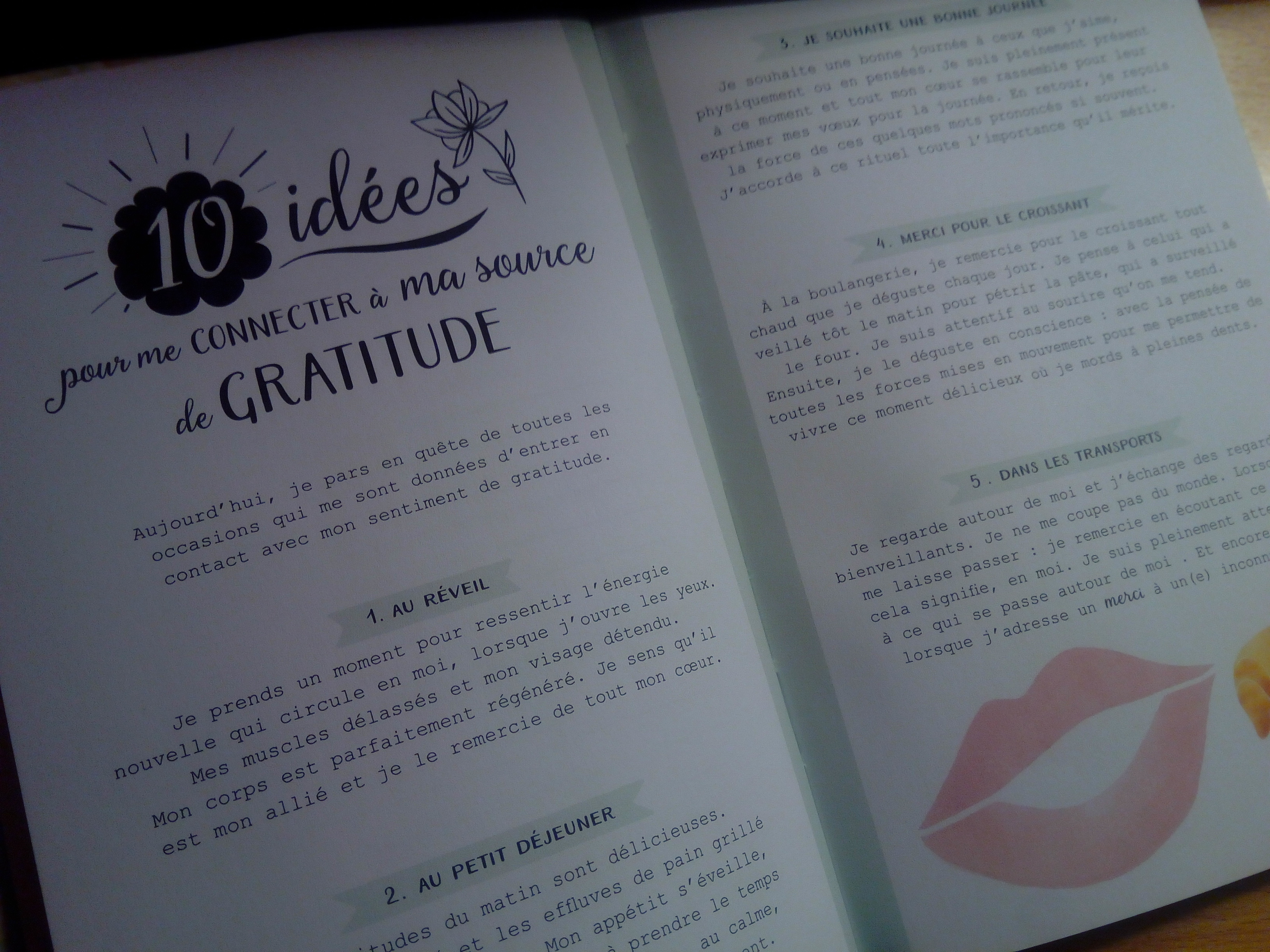 merci carnet gratitude