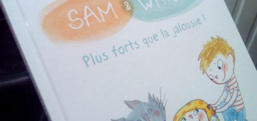 livre jalousie pour enfant