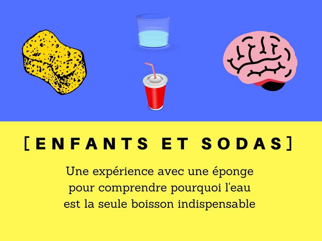 Enfants et sodas éponge cerveau eau