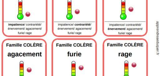 jeu 7 famille émotions