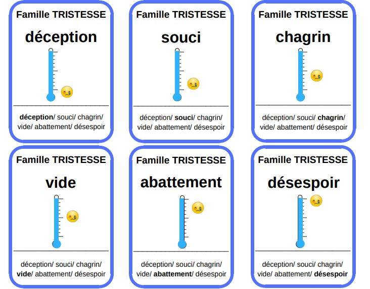 jeu familles émotions