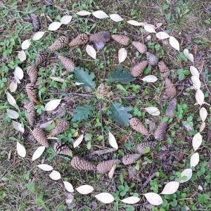 mandala naturel landart