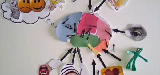 le cerveau à l'école en vidéo