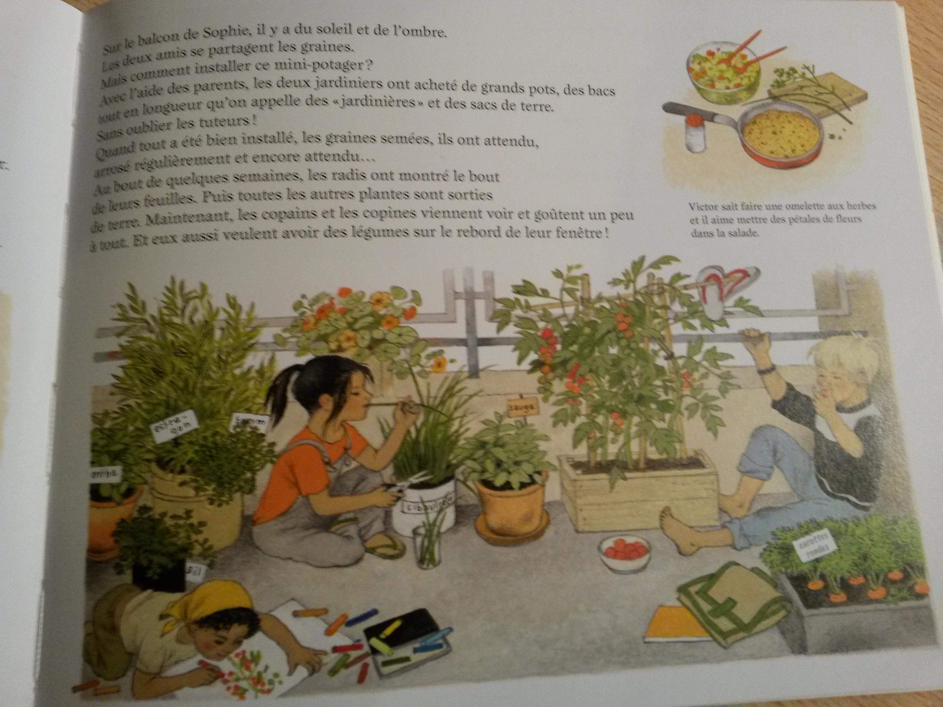Comment Pousse Les Avocats Ça pousse comment ? : à la découverte des travaux jardiniers