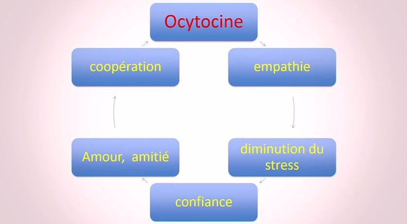 ocytocine éducation