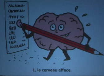 cerveau pour apprendre à l'école