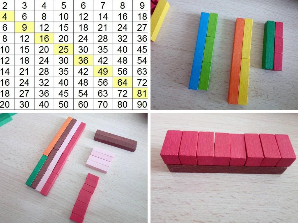 réglettes bois multiplication