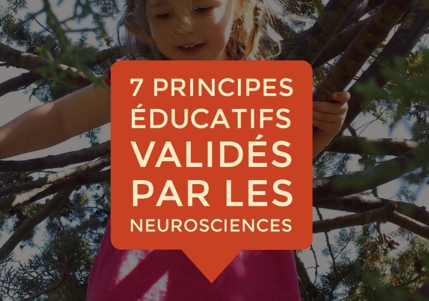 principes éducation neurosciences