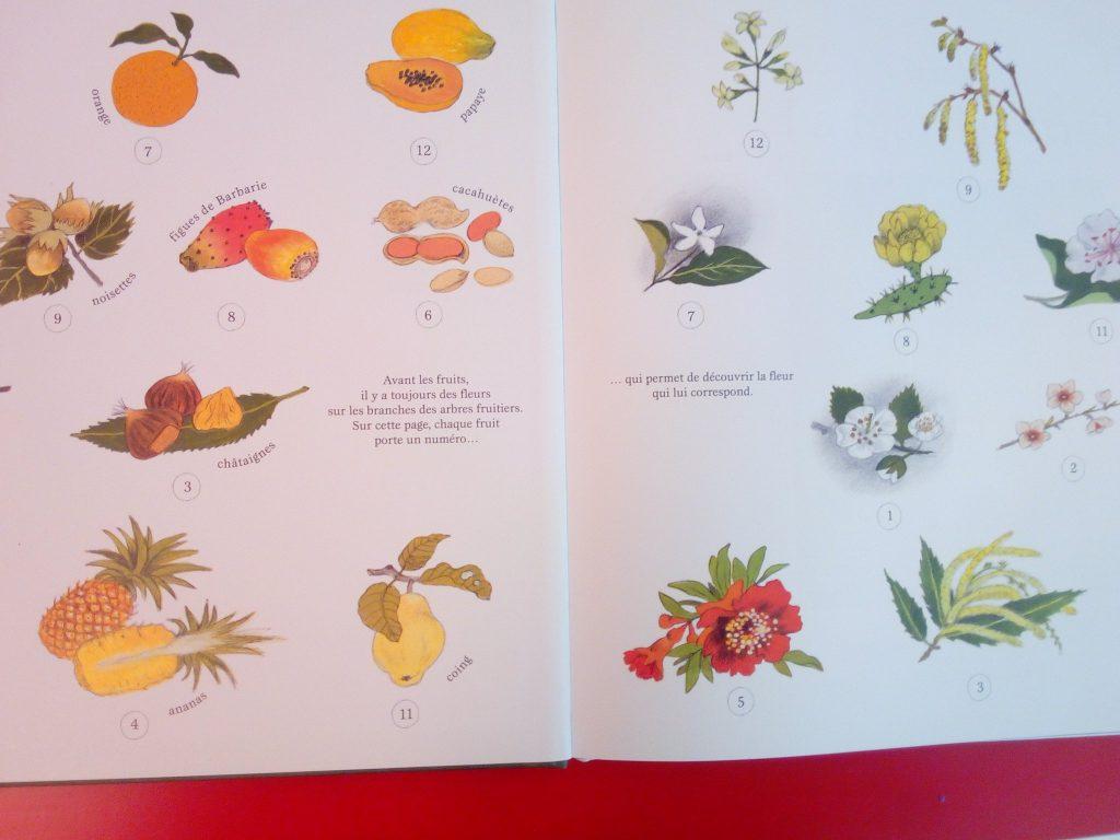 fruits et fleurs enfants