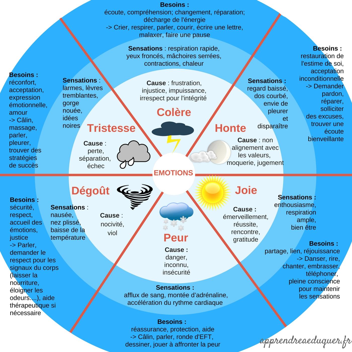 roue des émotions