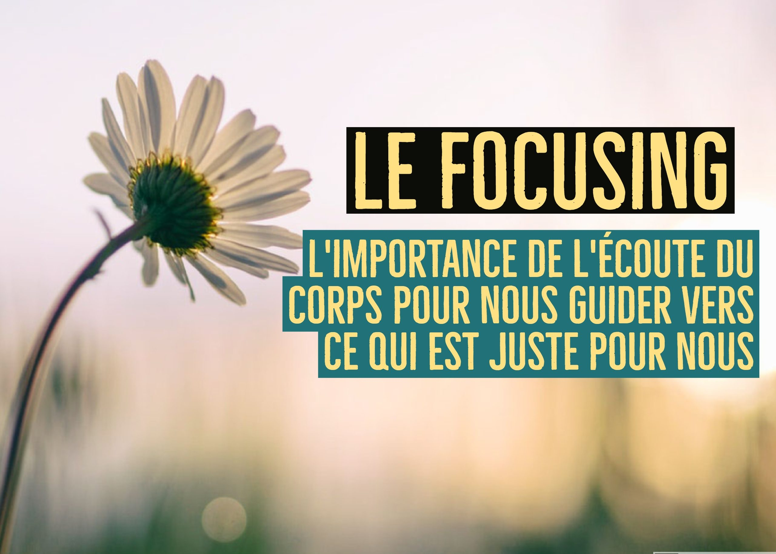 focusing ecoute corps