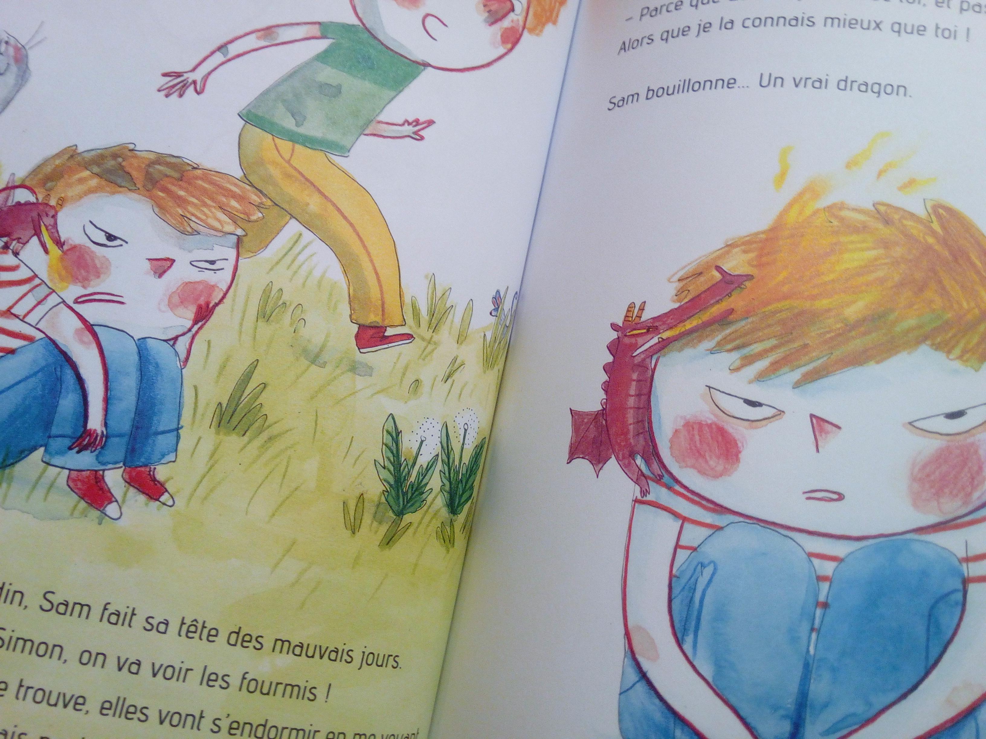 livre enfants jalousie