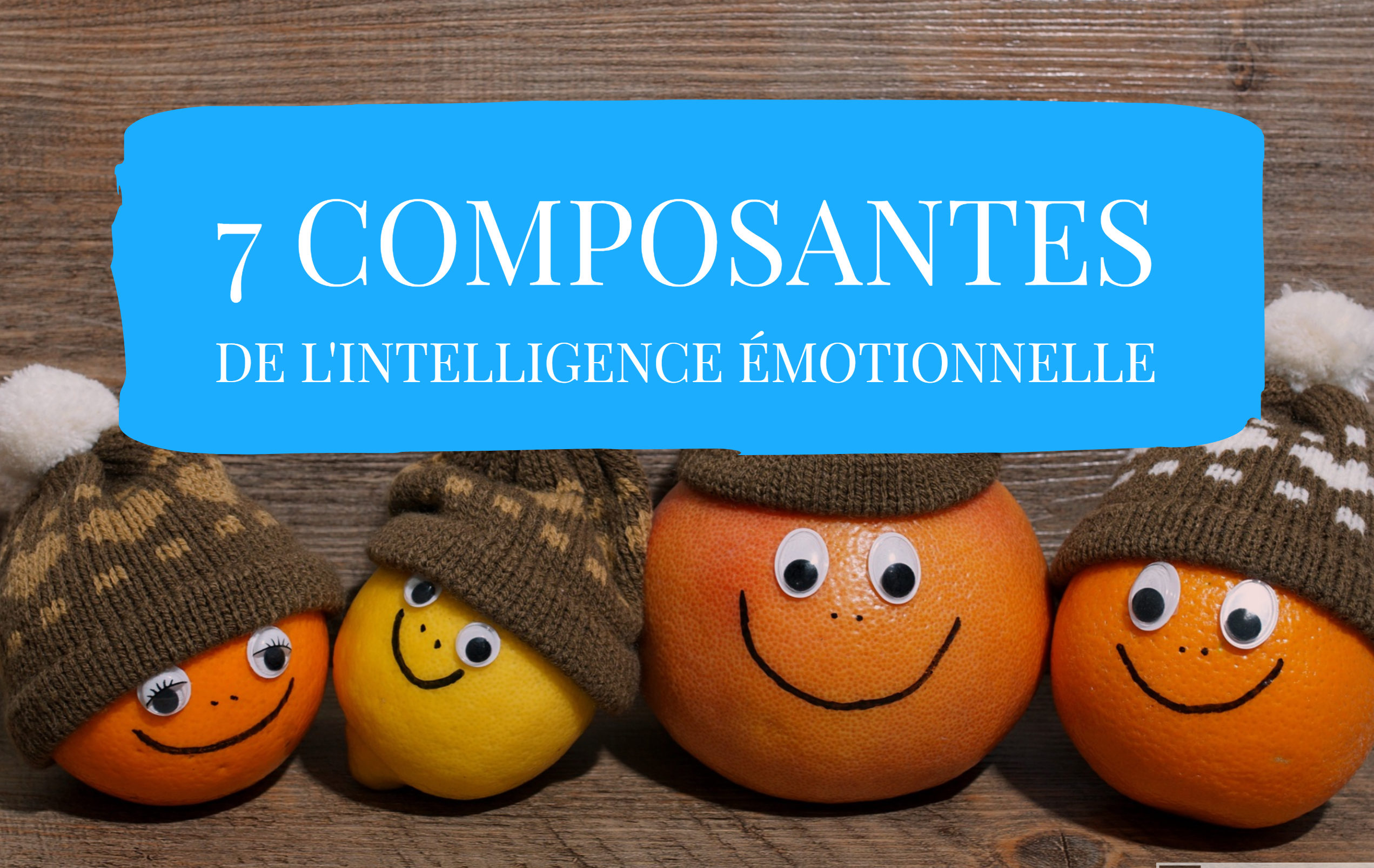 composantes de l'intelligence émotionnelle