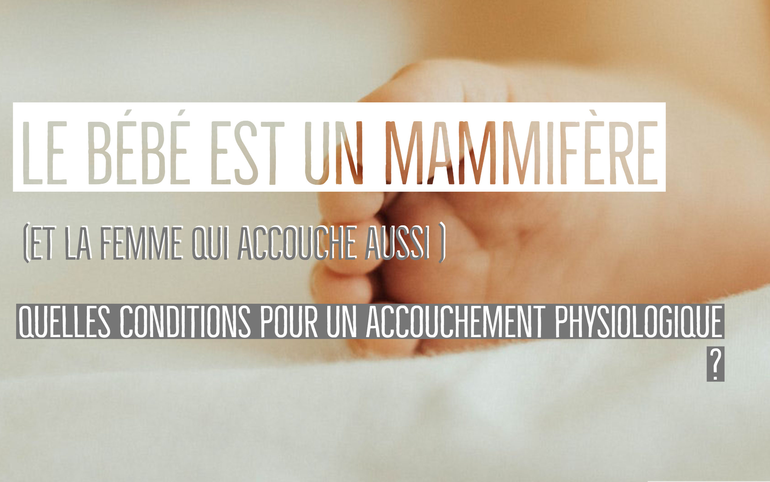 bébé mammifère accouchement physiologique