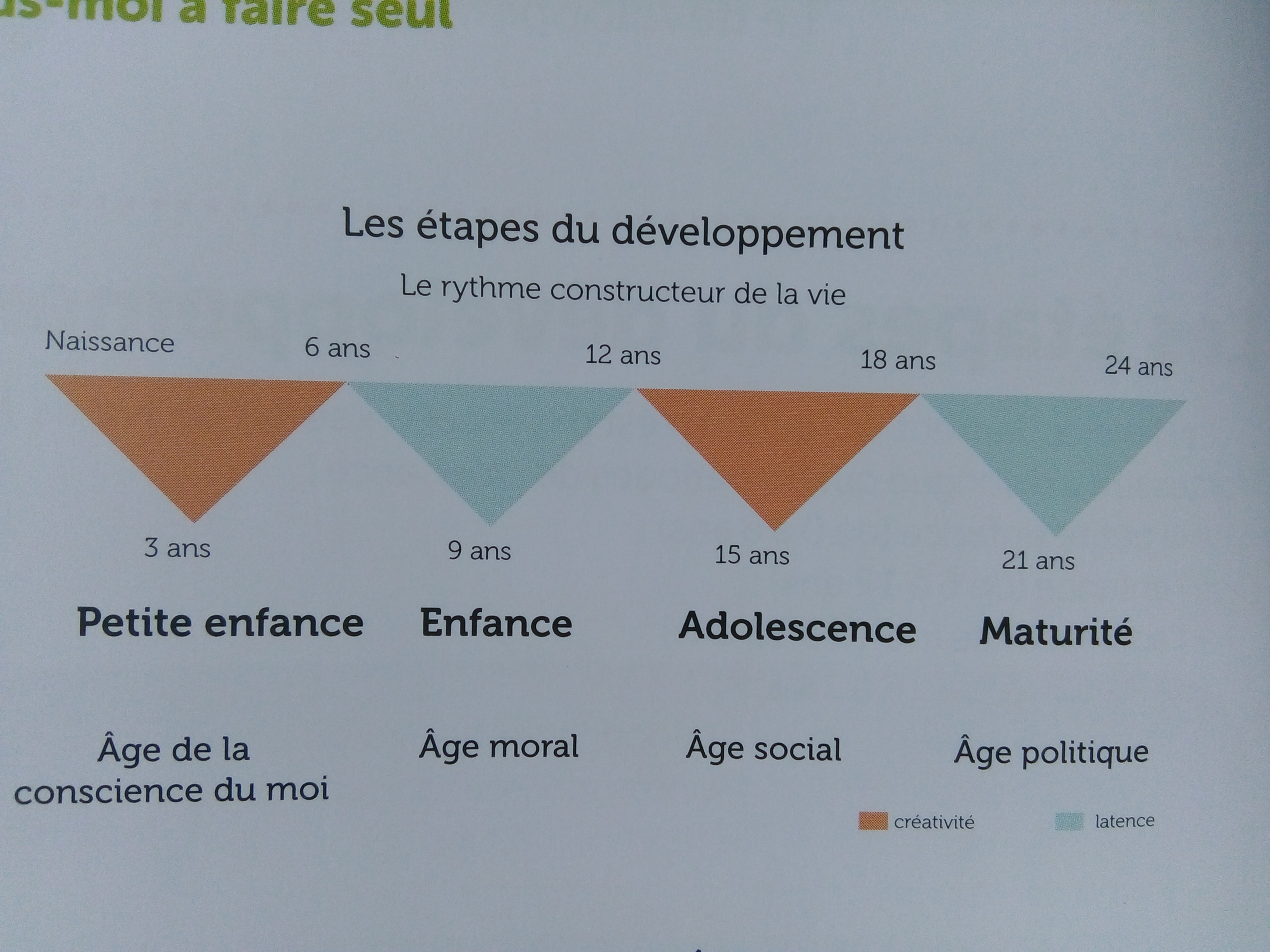 étapes développement enfant montessori