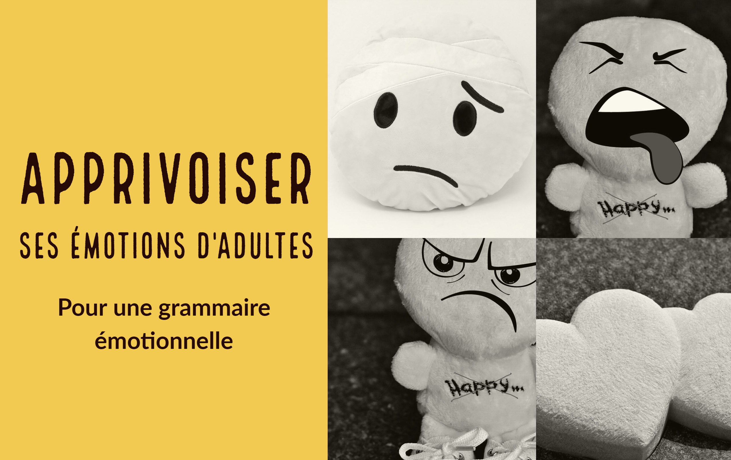 émotions d'adultes