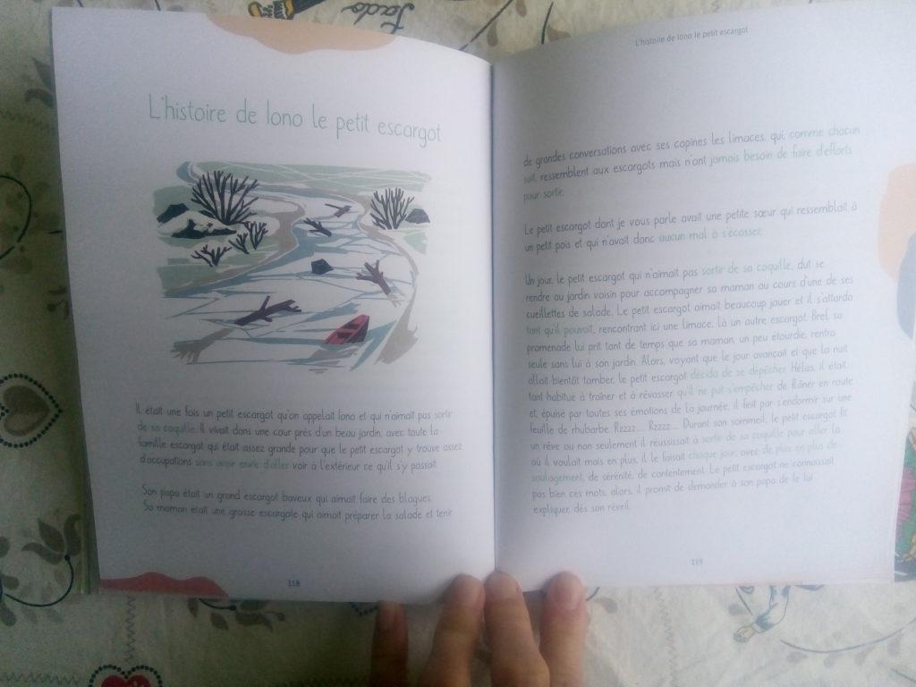 livre contes thérapeutiques enfants dudek