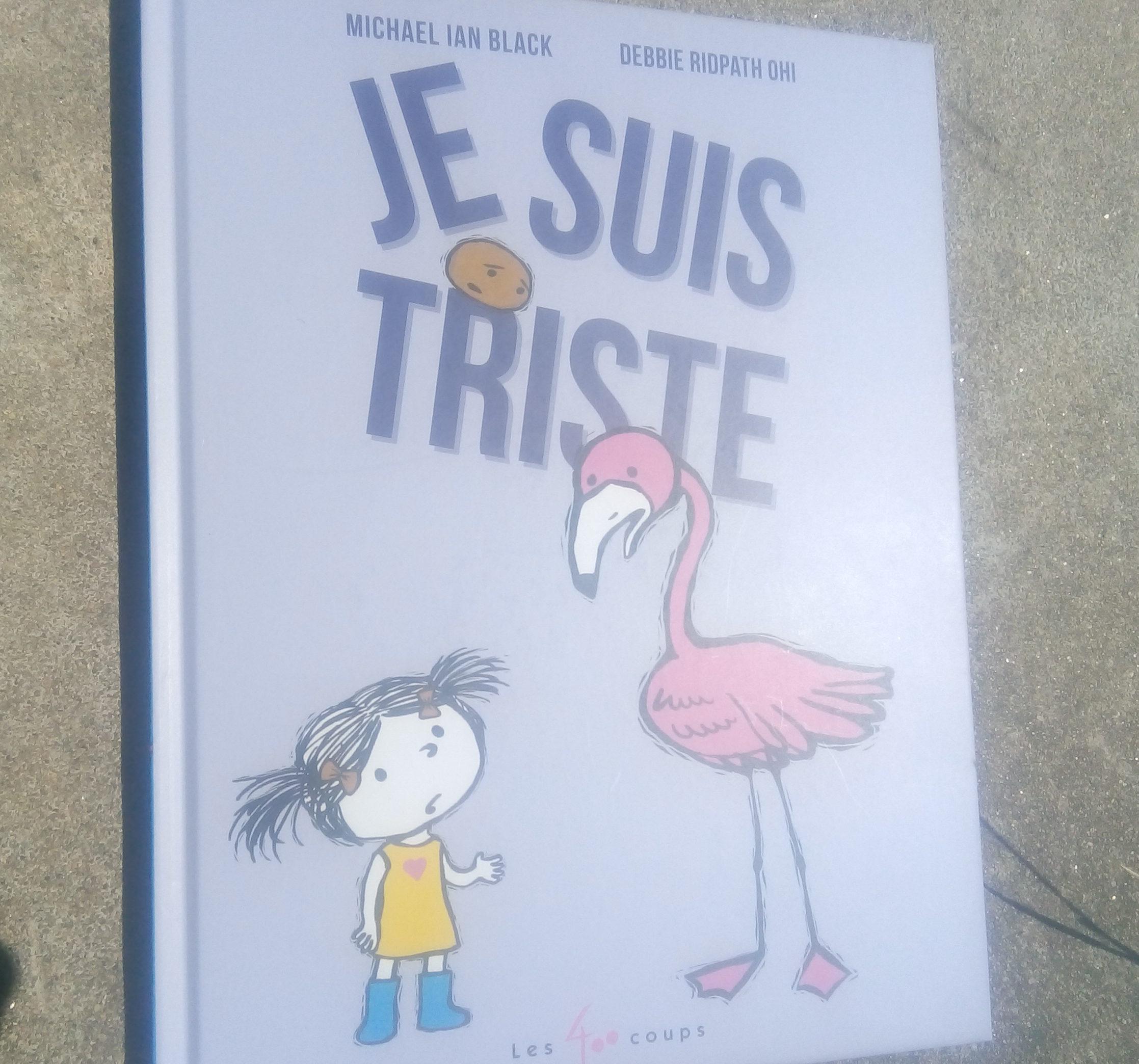 livre enfants sur la tristesse