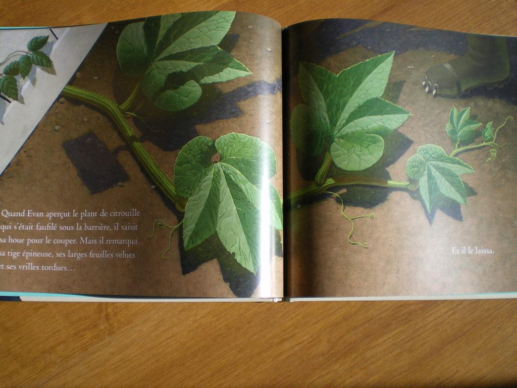 livre sur le deuil pour les enfants