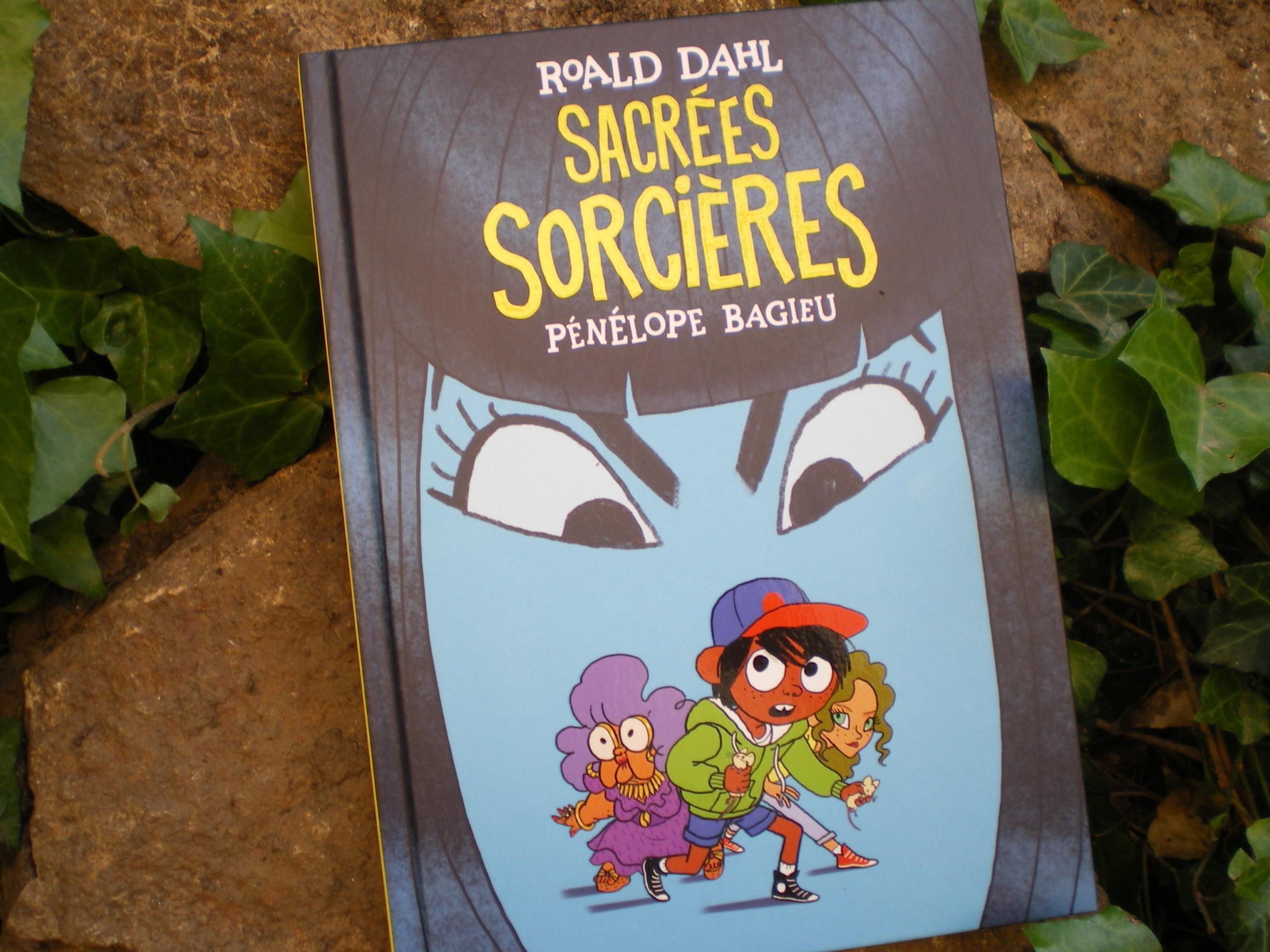 sacrées sorcières bande dessinée de pénélope bagieu