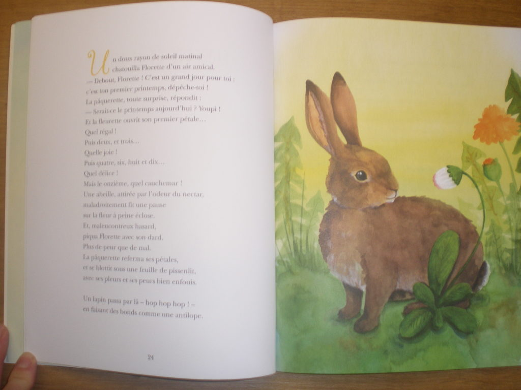 livre belles fables avec des animaux
