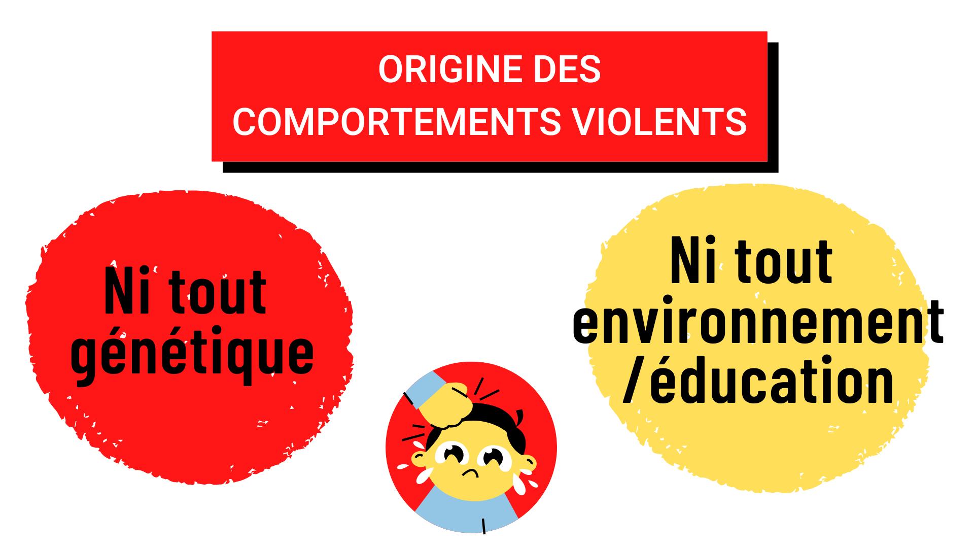 Origine des comportements violents ni tout génétique, ni tout environnement_ éducation