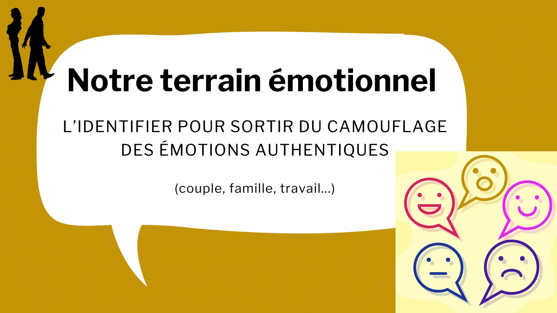 terrain émotionnel émotions couple